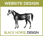 Black Horse Design Website Design (West Wales Horse)