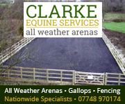 Clarke Equine Services  2018 (West Wales Horse)