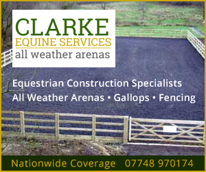 Clarke Equine Services 2020 (West Wales Horse)