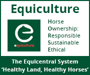 Equiculture 01 (West Wales Horse)