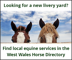 Livery Yards (West Wales Horse)