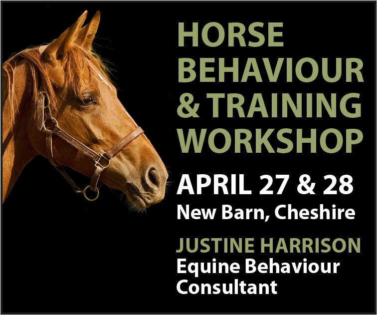 Justine Harrison Workshop April 2019 (West Wales Horse)